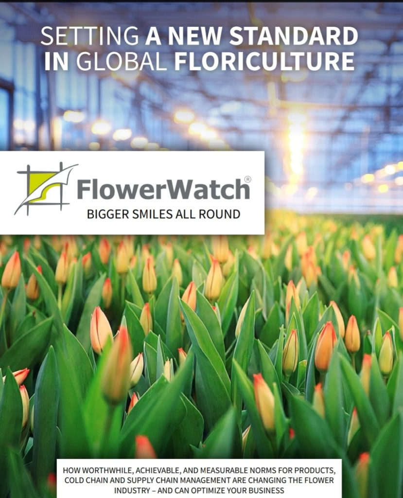Cover of the FlowerWatch whitepaper, with flowers in a greenhouse